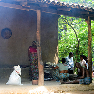 Traditional Village (Ape Gama)