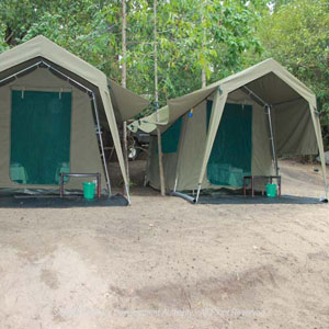 Camping in Kumana National Wildlife Sanctuary