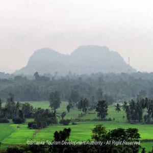 Pannathgoda Purana Raja Maha Viharaya