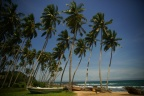 Sri Lankan Attractions